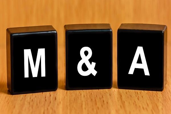 M&A bất động sản chậm lại, phát hành trái phiếu để huy động vốn ngày càng phổ biến - Ảnh 1.