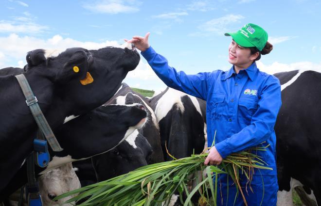 Cổ phiếu Mộc Châu Milk lên sàn sau 1 năm về với Vinamilk - 7