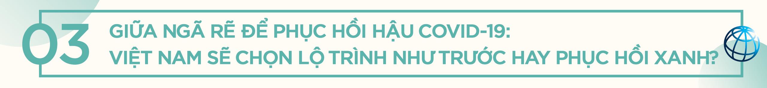 Giám đốc Quốc gia WB tại Việt Nam: Phục hồi xanh không có nghĩa là đánh đổi tăng trưởng kinh tế! - Ảnh 3.