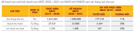 Hoa Sen Group (HSG) đặt mục tiêu lãi sau thuế 1.500 tỷ đồng năm tài chính 2020-2021 - Ảnh 2.