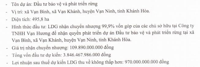 Đầu tư LDG (LDG): Quý 4 lãi vỏn vẹn 342 triệu đồng do hụt nguồn thu tài chính - Ảnh 3.