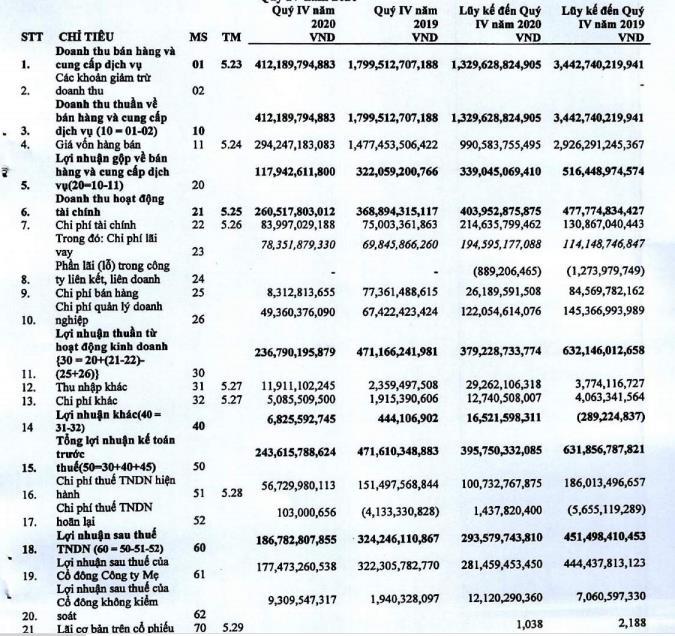 Hải Phát (HPX): Quý 4 lãi 187 tỷ đồng, giảm 42% so với cùng kỳ 2019 - Ảnh 1.
