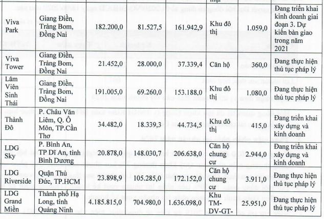 Hụt nguồn thu trong năm 2020, LDG lên kế hoạch LNST cao gấp 23 lần lên 301 tỷ đồng - Ảnh 4.