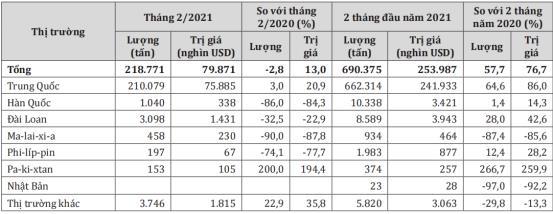Giá sắn tươi lập kỷ lục, nông dân trồng sắn lợi nhuận cao - Ảnh 2.