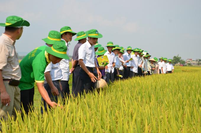 Từ khi đi vào hoạt động cho đến nay, PVFCCo luôn nỗ lực tìm tòi, nghiên cứu, đầu tư để tạo ra những sản phẩm phân bón chất lượng cao, góp phần cùng bà con nông dân tạo nên những vụ mùa bội thu.