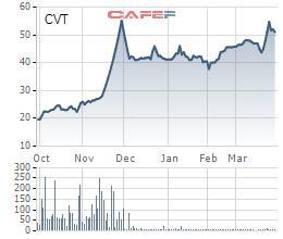 CVT chi trả cổ tức bằng tiền tỷ lệ 20%, mua 3,6 triệu cổ phiếu sau khi lộ diện cổ đông chi phối - Ảnh 1.