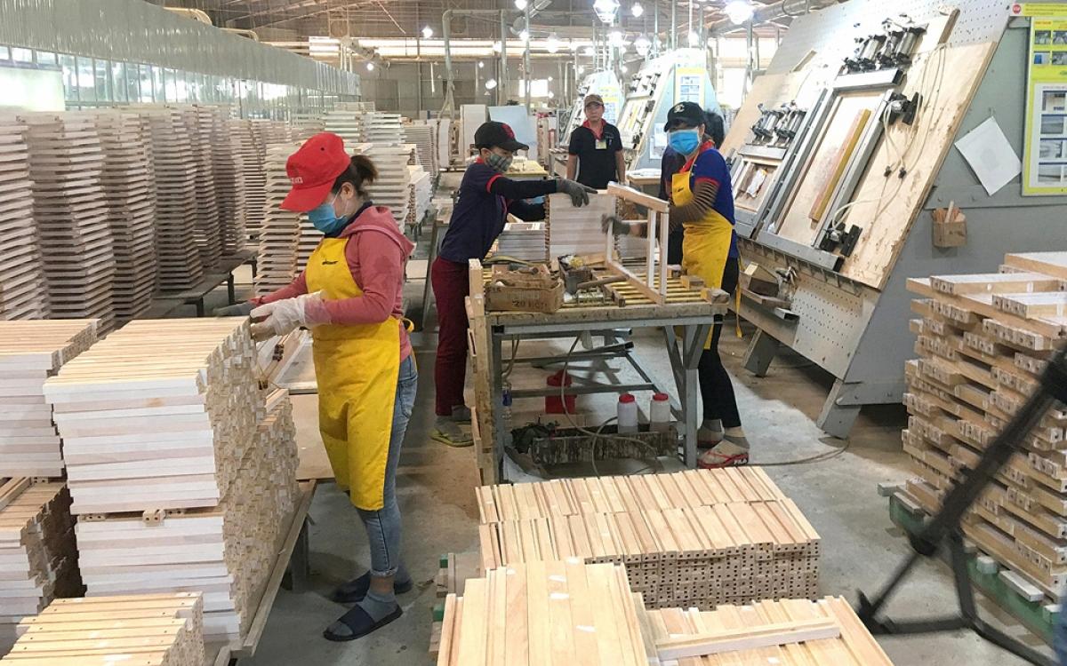 Nhà đầu tư Trung Quốc dẫn đầu về FDI rót vào ngành gỗ Việt - Ảnh 1.