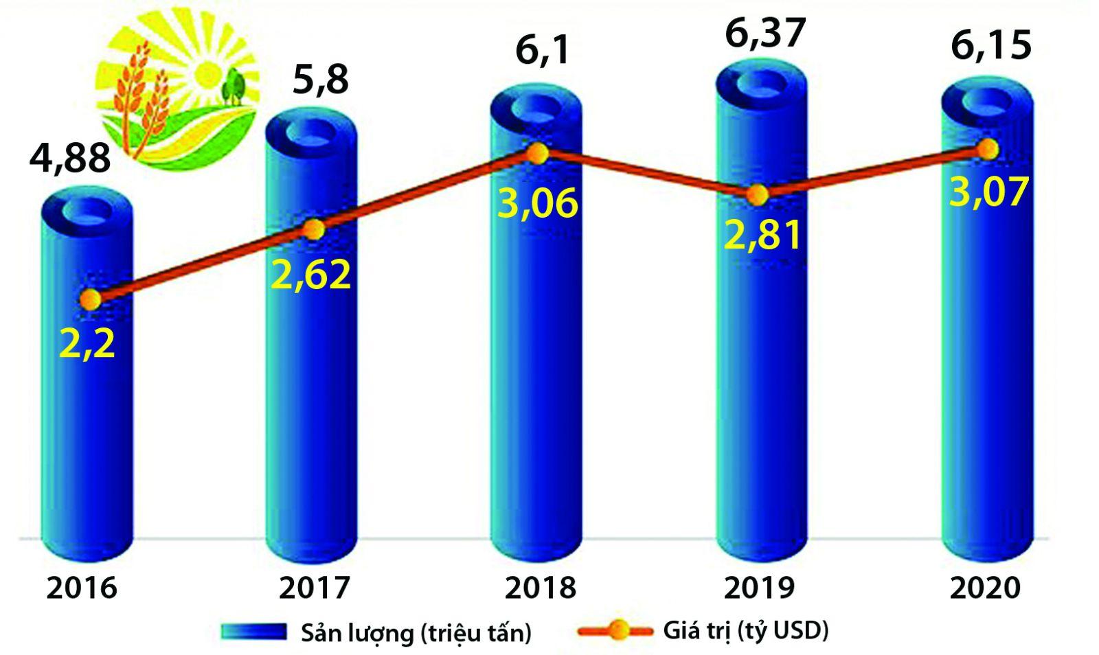 Nghịch lý thị trường xuất khẩu gạo Việt Nam - Ảnh 1.