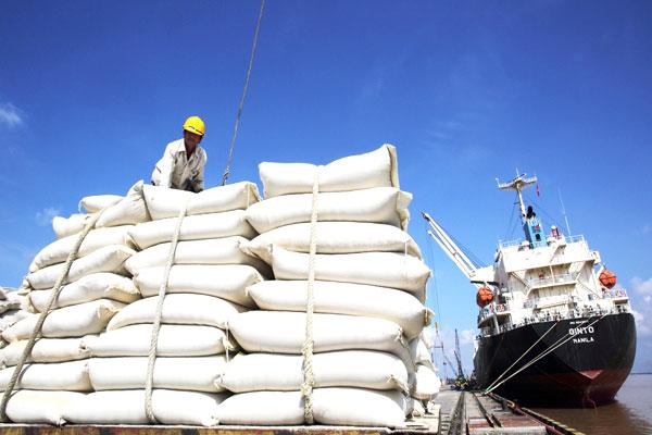 Nghịch lý thị trường xuất khẩu gạo Việt Nam - Ảnh 2.