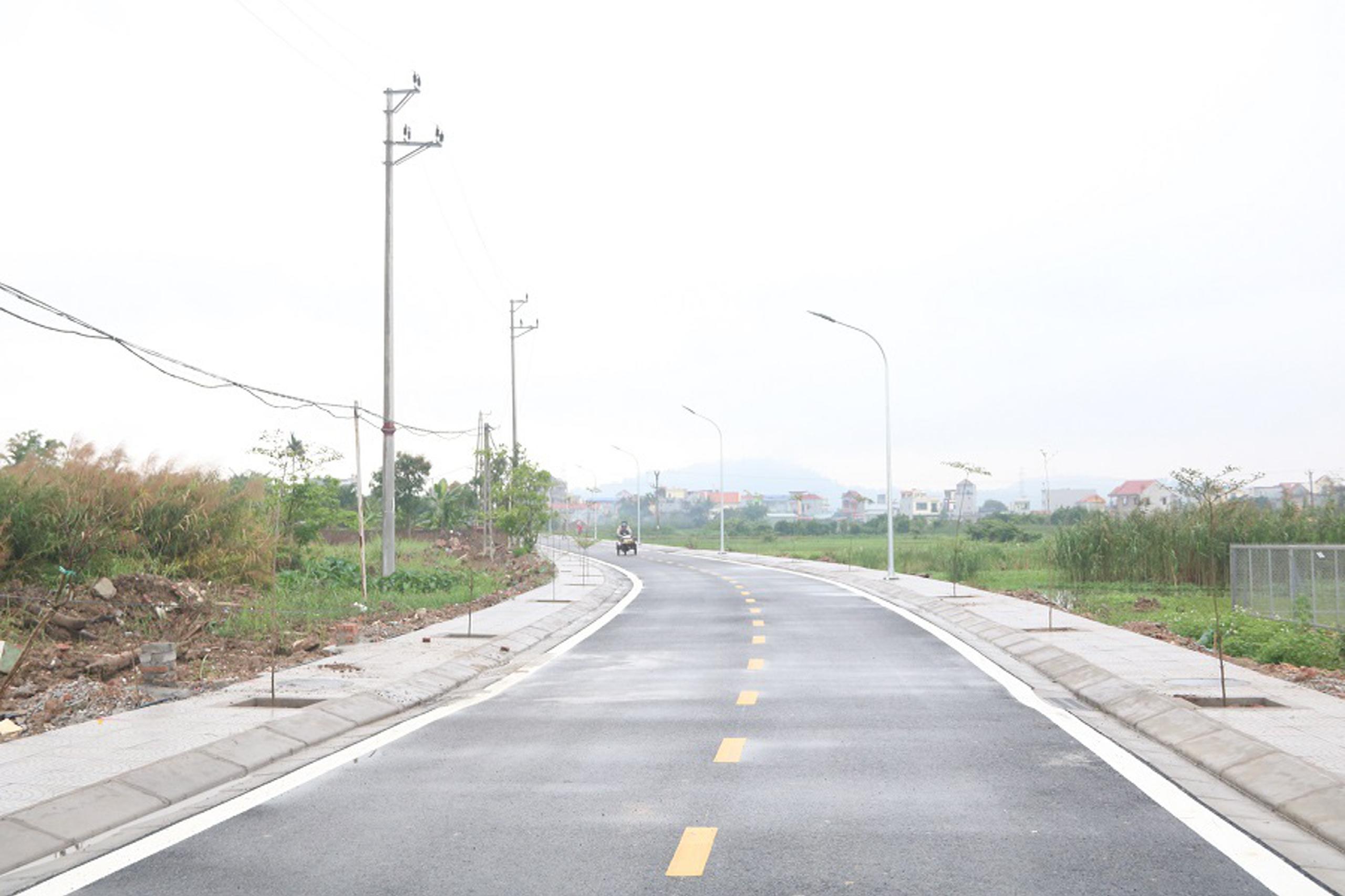Một đoạn đường nông thôn mới kiểu mẫu trên địa bàn xã Đồng Thái, huyện An Dương (TP Hải Phòng).