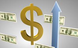 CEO, DLG, NSH, HQC, TXM, SVN, CKV, SDP, VFS, AMS: Thông tin giao dịch lượng lớn cổ phiếu
