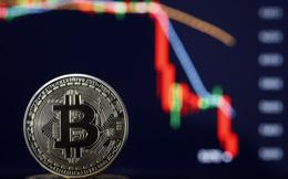 Đi tìm lời giải cho cú rơi thẳng đứng của Bitcoin