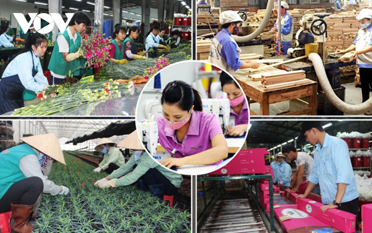 Lao động di cư ảnh hưởng đến tái cơ cấu kinh tế Việt Nam  - Ảnh 1.