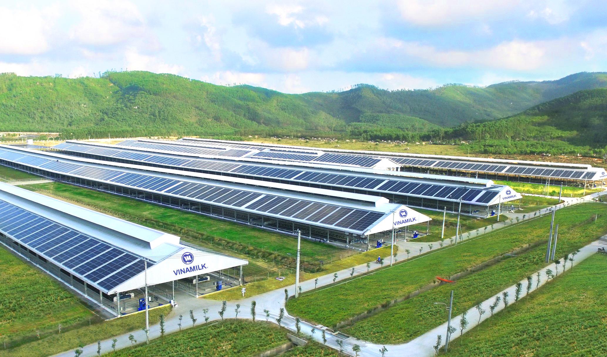 Hệ thống trang trại Vinamilk Green Farm (tạiQuảng Ngãi, Tây Ninh, Thanh Hóa) sẽ được công ty đầu tư phát triển trong thời gian tới.