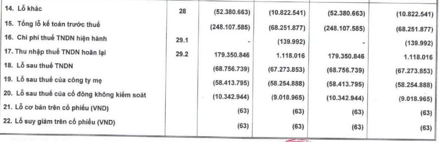Hoàng Anh Gia Lai (HAG): Bán đi đứa con nông nghiệp, quy mô tài sản giảm phân nửa, doanh thu cũng chỉ bằng ¼ cùng kỳ với 284 tỷ đồng - Ảnh 2.