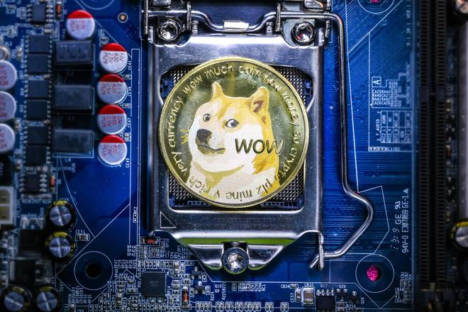 Lãi triệu USD nhờ Dogecoin, giám đốc điều hành của Goldman Sachs lập tức bỏ việc để về hưu non - Ảnh 2.