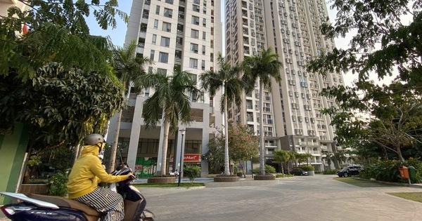 Đánh thuế căn hộ cho thuê tác động như thế nào đến thị trường? - Ảnh 1.