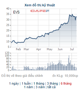 Chứng khoán Everest (EVS) báo lãi 178 tỷ đồng trong 6 tháng đầu năm, gấp 47 lần cùng kỳ - Ảnh 2.