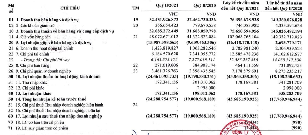 Suất ăn Hàng không Nội Bài (NCS) lỗ tiếp 24 tỷ đồng trong quý 2 - Ảnh 2.