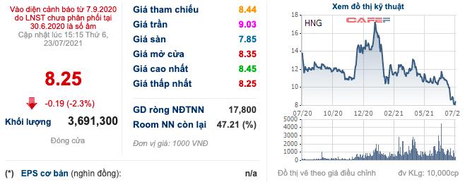 HAGL Agrico (HNG): Cổ phiếu giảm từ 18.000 đồng/cp xuống còn 8.250 đồng/cp, Thaco dừng việc đầu tư sở hữu 741,5 triệu cổ phiếu phát hành hoán đổi nợ - Ảnh 1.