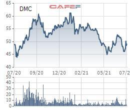 Ảnh hưởng từ dịch bệnh, lợi nhuận quý 2/2021 của Domesco (DMC) giảm 35% so với cùng kỳ năm trước - Ảnh 2.