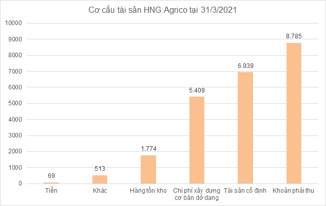 Thế khó của HAGL Agrico khi Thagrico dừng rót vốn thêm - Ảnh 1.