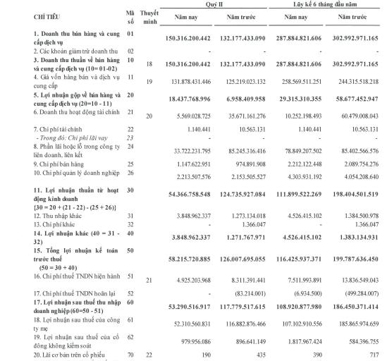 Hoàng Huy (HHS): Lợi nhuận quý 2 giảm hơn nửa do giảm doanh thu tài chính và lợi nhuận từ công ty liên kết - Ảnh 1.