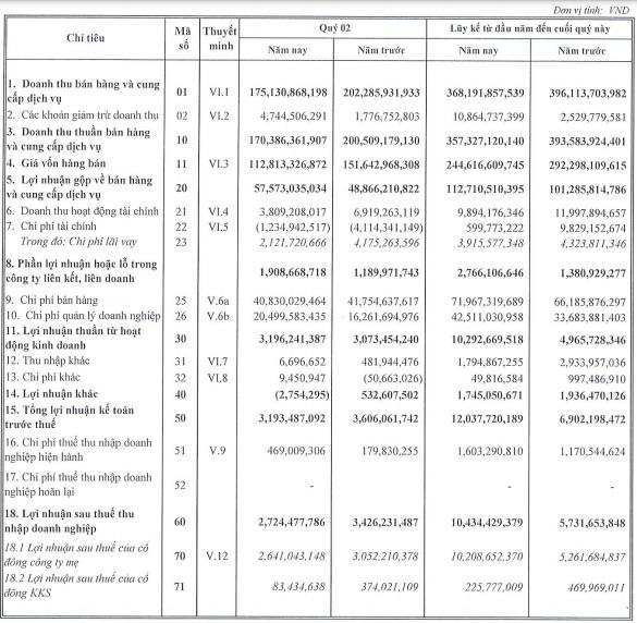 Bóng đèn Điện Quang (DQC): Lãi ròng nửa đầu năm tăng gấp đôi lên hơn 10 tỷ đồng, dù doanh thu sụt giảm do ảnh hưởng Covid-19 - Ảnh 1.