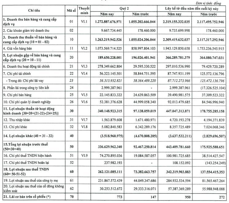 Nhờ khoản thu từ chuyển nhượng cổ phần, Idico (IDC) báo lãi quý 2 hơn 262 tỷ đồng, gấp 3,6 lần cùng kỳ 2020 - Ảnh 2.