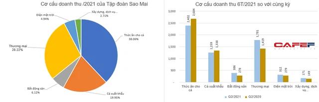 Tập đoàn Sao Mai (ASM) báo lãi sau thuế 252 tỷ đồng nửa đầu năm, giảm 19% so với cùng kỳ - Ảnh 2.