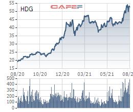 Lộ diện nhà đầu tư cá nhân nắm giữ lượng cổ phiếu HDG, GIL có giá trị gần 800 tỷ đồng - Ảnh 2.