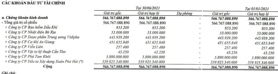 Bamboo Capital (BCG): Ghi nhận lãi đột biến từ đầu tư, quý 2/2021 LNST cao gấp 16 lần cùng kỳ với 316 tỷ đồng - Ảnh 2.