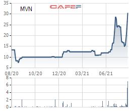 Cổ phiếu tăng trần liên tiếp, vốn hóa Vinalines (MVN) lên gần 2 tỷ USD - Ảnh 1.