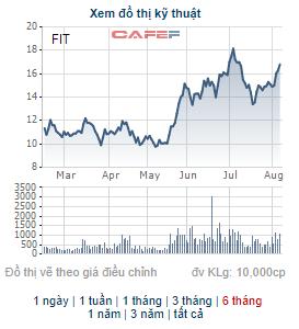 FIT thông qua nội dung triển khai phát hành 51 triệu cổ phiếu chào bán cho cổ đông hiện hữu - Ảnh 1.