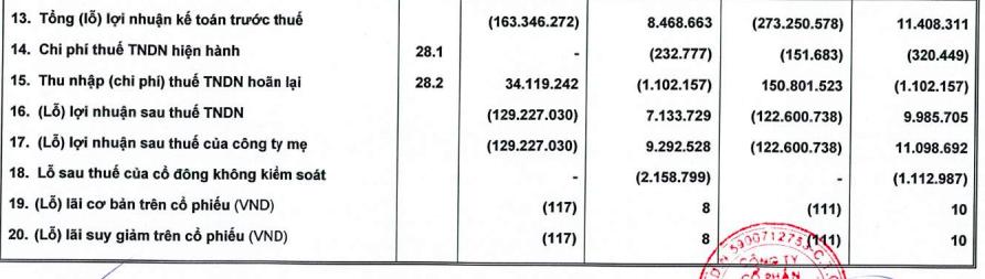 HAGL Agrico (HNG): Nửa đầu năm lỗ ròng 123 tỷ đồng, dư nợ tại Thaco chiếm đến 47% tổng tài sản với 7.359 tỷ đồng - Ảnh 2.