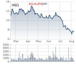 HAGL Agrico (HNG): Nửa đầu năm lỗ ròng 123 tỷ đồng, dư nợ tại Thaco chiếm đến 47% tổng tài sản với 7.359 tỷ đồng - Ảnh 4.