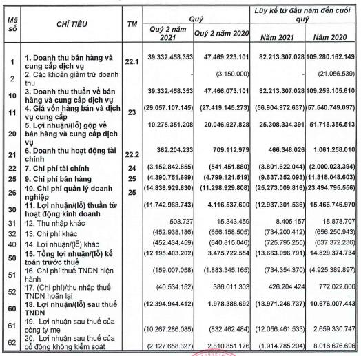 Đặt kế hoạch năm 2021 khá lạc quan, ông chủ dự án 5 sao Six Senses Ninh Vân Bay vẫn lỗ lsau 6 tháng - Ảnh 1.