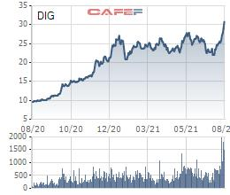 DIC Corp (DIG) chuẩn bị phát hành 15 triệu cổ phiếu ESOP với giá bằng nửa thị giá - Ảnh 1.