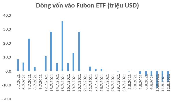 Fubon FTSE Vietnam ETF nộp đơn xin tăng quy mô đầu tư thêm 180 triệu USD - Ảnh 1.