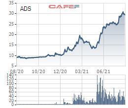 Damsan (ADS) chuẩn bị chào bán 10 triệu cổ phiếu với giá bằng 1/3 thị giá - Ảnh 1.