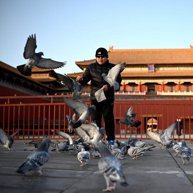 Giới trẻ độc thân - Mỏ vàng mới của kinh tế tiêu dùng Trung Quốc  - Ảnh 2.
